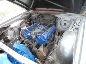 i think it is mandatory to use ford blue when painting the engine... you know... if it is a ford.